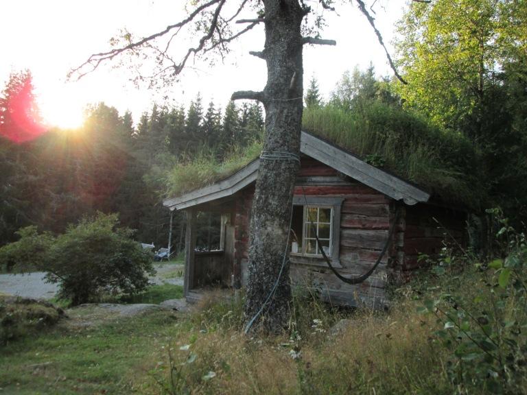 cabin-norway