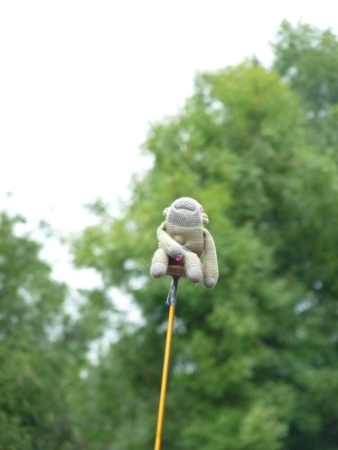 monkey on a stick - end of the road